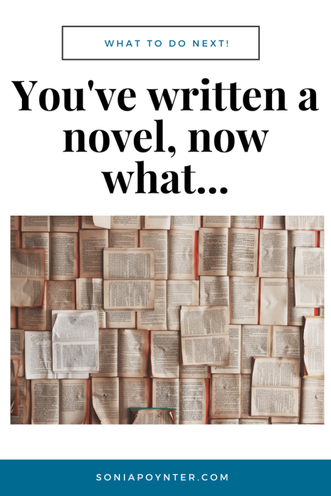 You've written a novel...