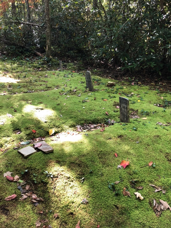 Grave Yard in the woods